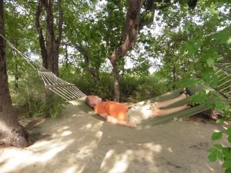 chilling at planet baobab