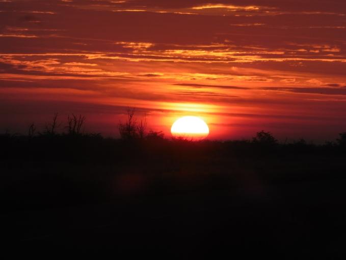 sunrise at Nxai Pans