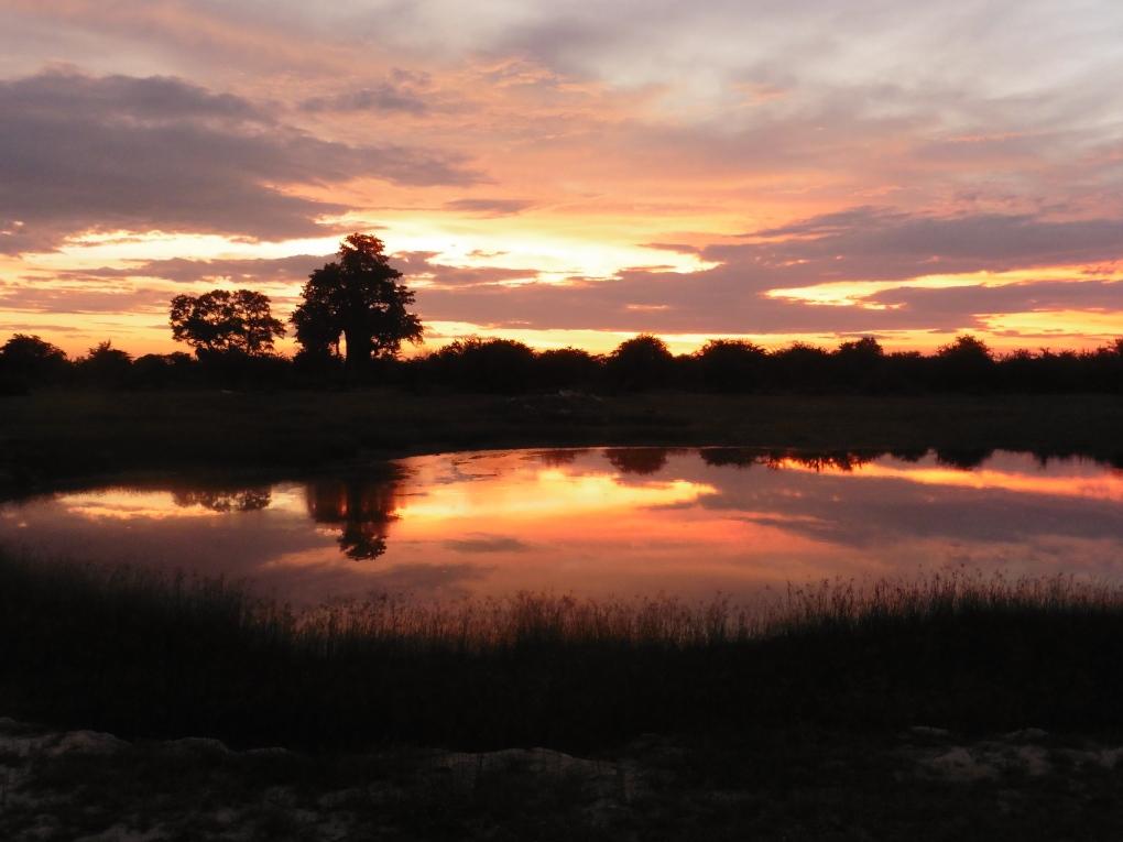 sunset at the waterhole (4)