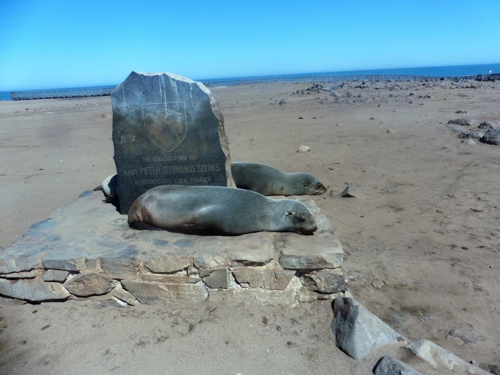5-Cape Cross Seal Reserve